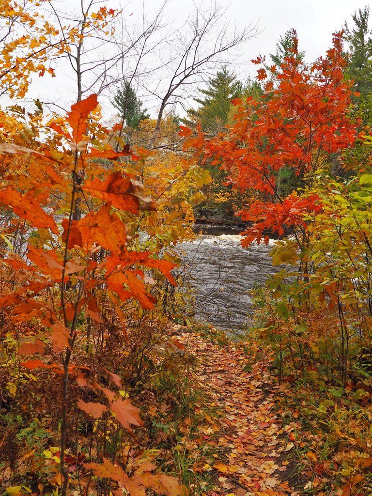 minnesota fall colors foliage
