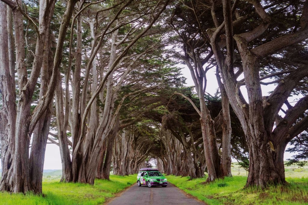Pacific Coast Highway Road Trip Guide: Where to Stop, Hike and Camp