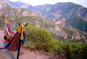 best hammock stands vivere