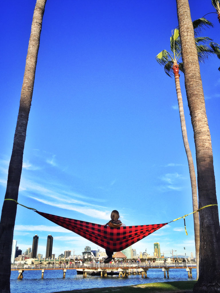 hammock hanging from trees with the bay and downtown San Diego in the background